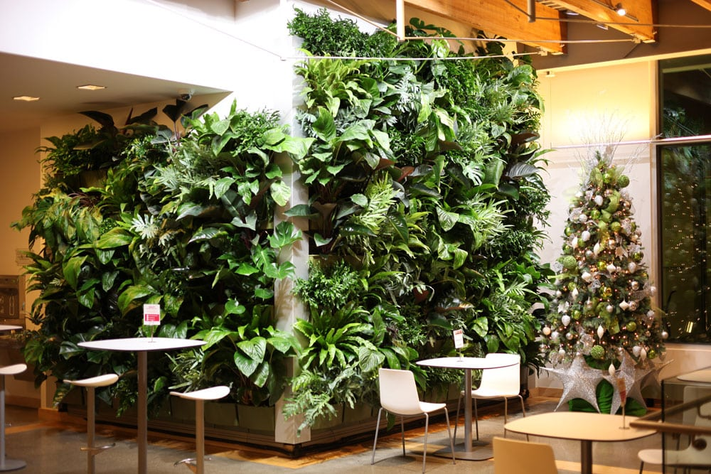 Indoor green wall with artificial LED lighting.