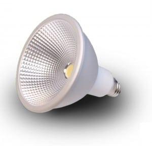 norb-bulb-main-image