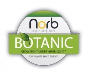 Norb Nutri-Orb Botanic Grow Light by LiveWall