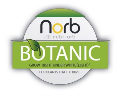 Introducing Norb® LED Grow Bulb by LiveWall
