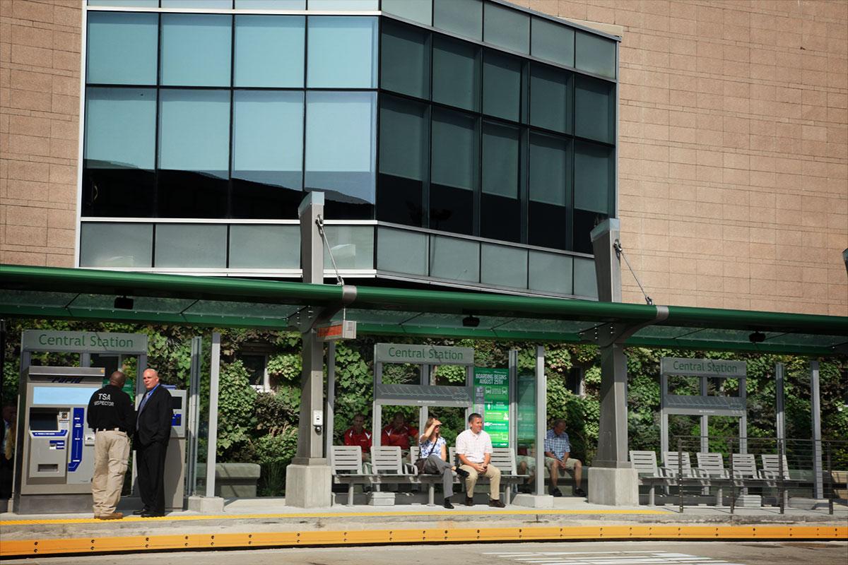 Wall garden at bus stop