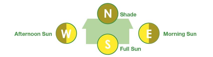 Northern hemisphere light exposure diagram.