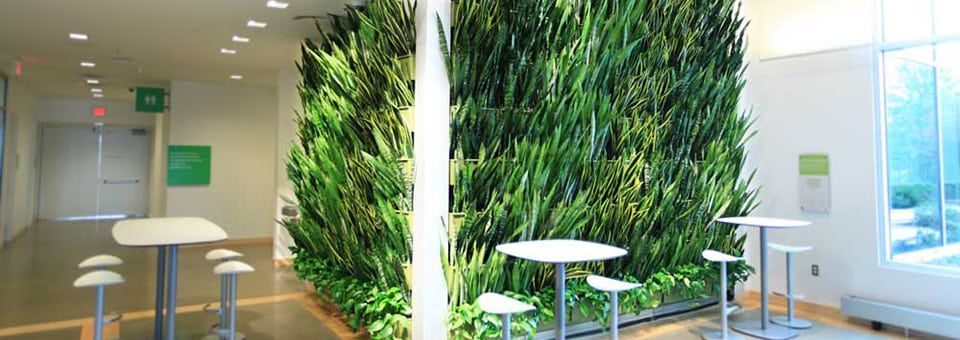 Healthy interiors for Green wall advantages