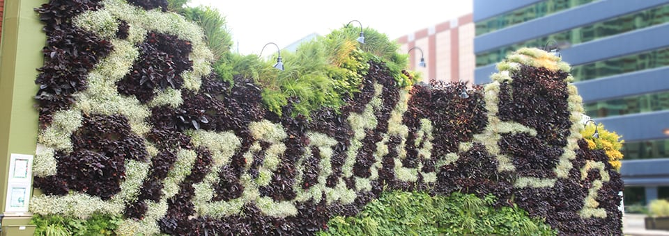 large living wall with flowers to spell the words breathe o2