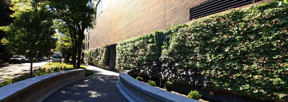 Living Wall vertical garden - livewall