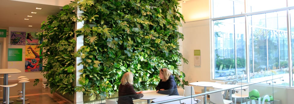 People enjoying living wall system