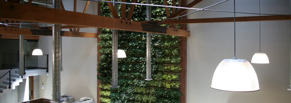Two story living wall system