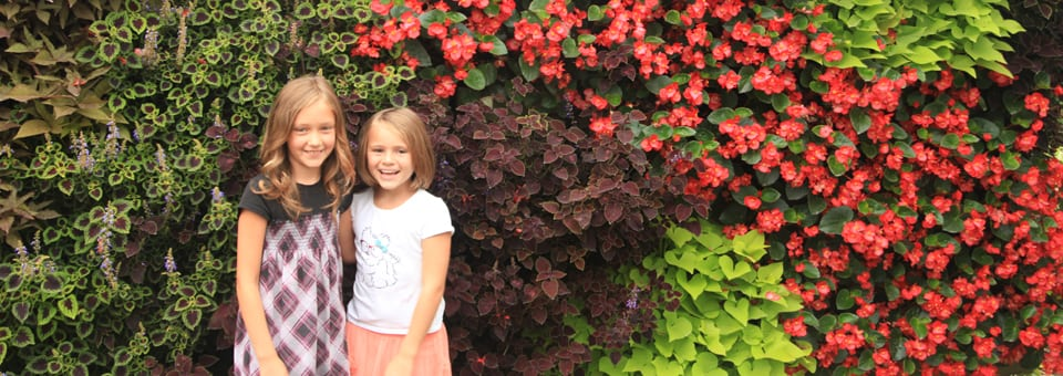 green wall with bright flowers and young girls