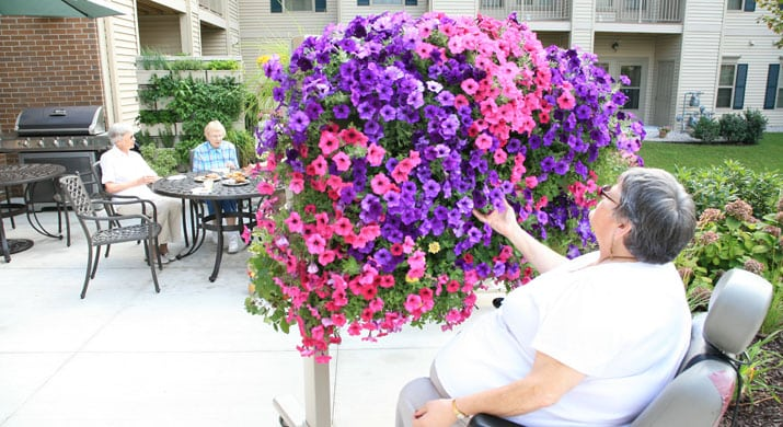 LiveScreen Access in Assisted Living Center with Woman in Wheelchair Gardening Petunias