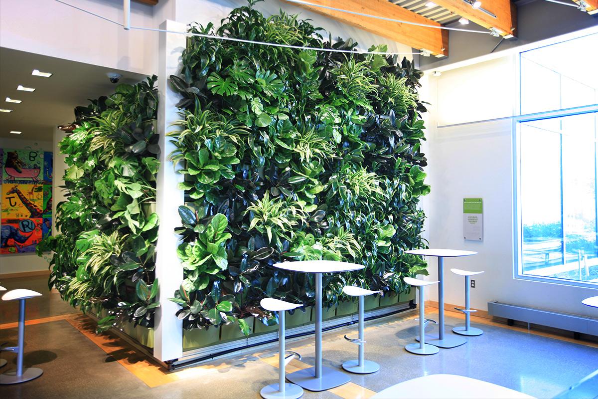 Fully vegetated green wall with track lighting.