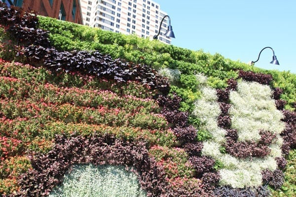 LiveWall's illustrative living wall for as a 2011 ArtPrize entry.