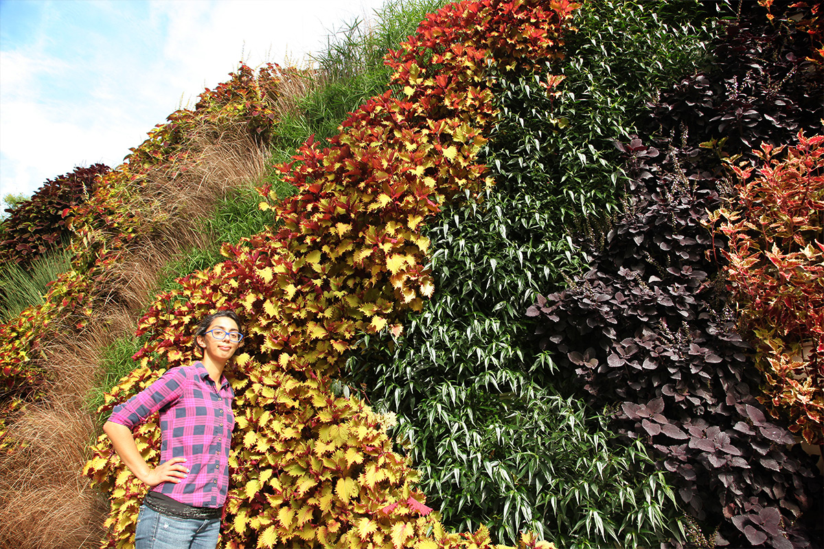 Living wall with bands of annuals beautifies surroundings.