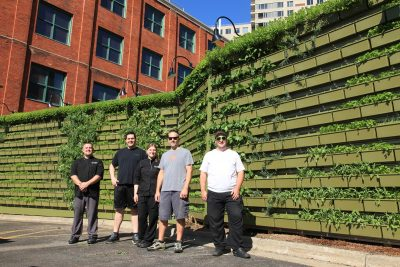Chefs standing in front of a LiveWall herb garden at The BOB in Grand Rapids, MI.