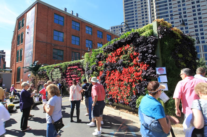 """ArtPrize attendees crowd around living wall entitled """"Back to Eden."""""""