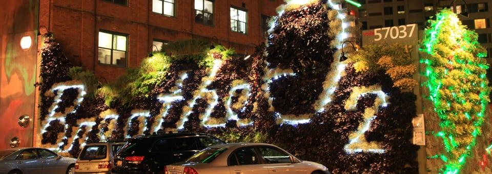 LED lights brighten green wall