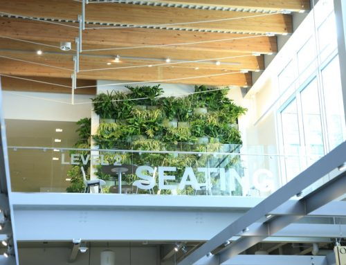 Grand Rapids Downtown Market Expands Green Space With Indoor Living Wall