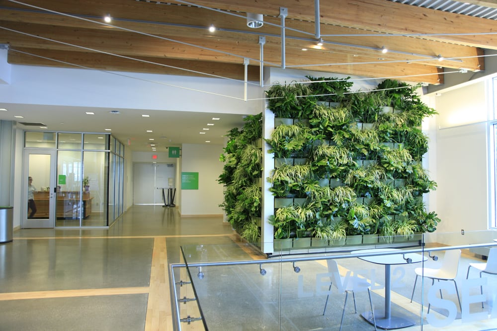 Downtown market indoor vertical garden livewall green wall system downtown market indoor vertical garden workwithnaturefo