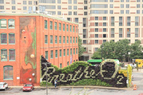 Living walls bring plants back to urban environments.