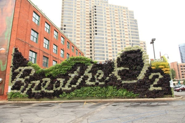 Tall buildings with living walls