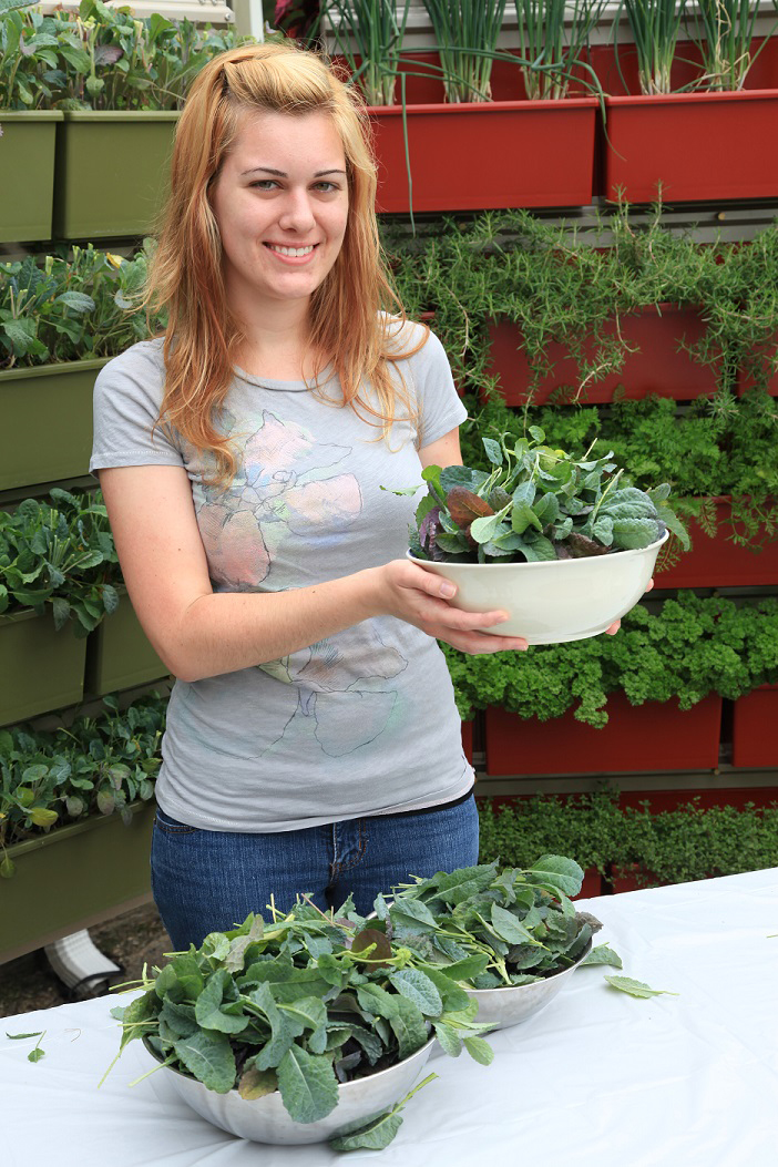 Greens such as kale and lettuce are very easy to grow in LiveWall.