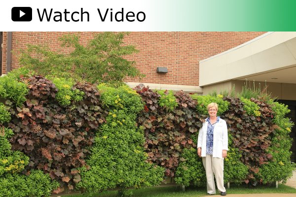 A video featuring the heart-patterned LiveWall at Spectrum Health Heart and Vascular Center in Grand Rapids, MI.