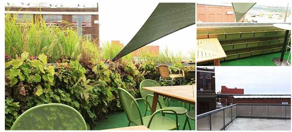 The Gilmore Collection made their Skydeck at the B.O.B. so much more inviting with a living wall system.