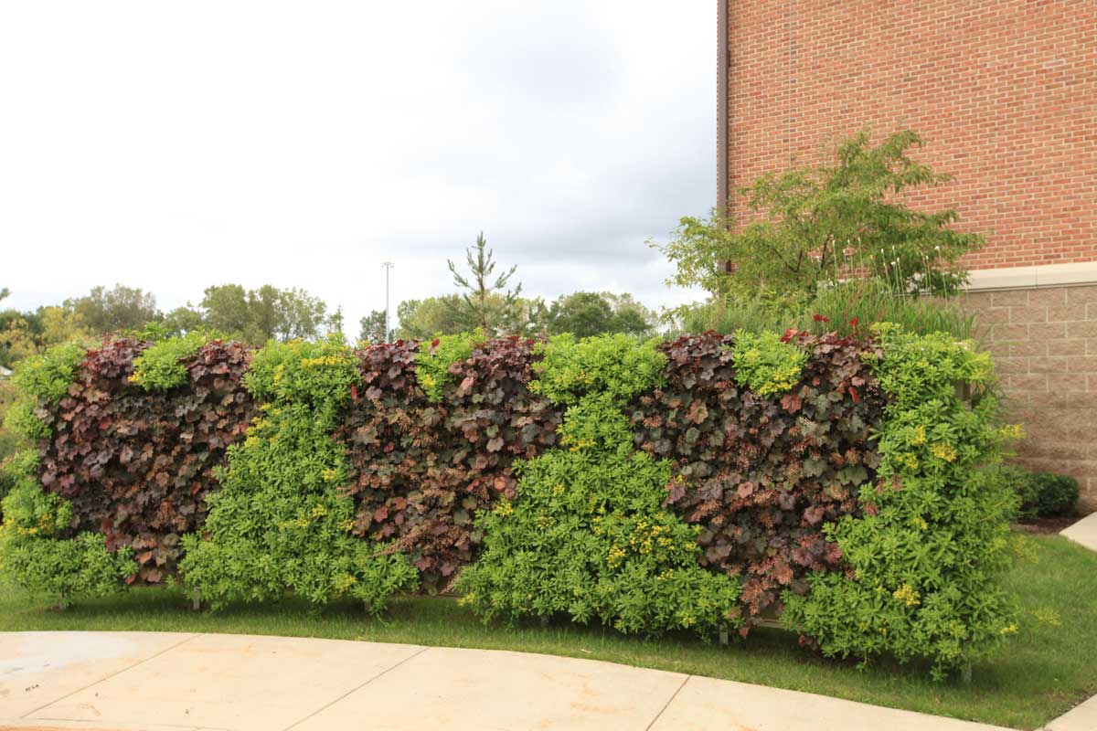 heart-living-wall