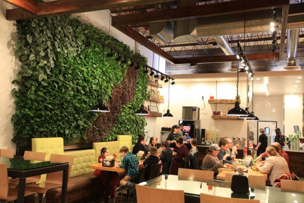 Diners enjoying the green living wall and natural atmosphere at Brome Modern Eatery in Dearborn, MI.