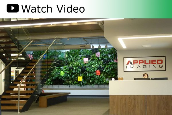A video featuring a LiveWall constructed in Applied Imaging's new corporate office.