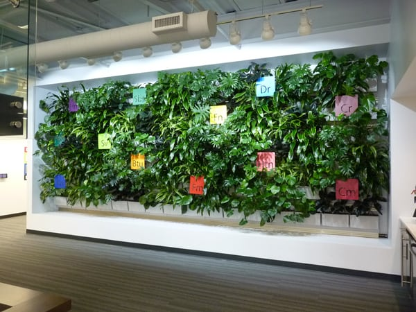Applied Imaging has a green wall in its new corporate office lobby.