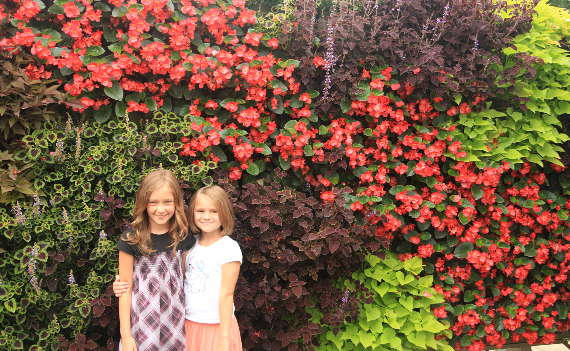 Students with bright colored flowers and vines in living wall.