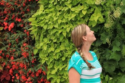 Woman in front of green wall planted with red-flowering begonias, coleus, coral bells and asparagus fern.