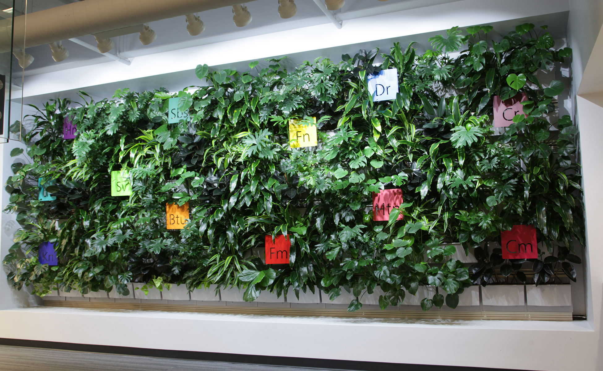 Corporate office with indoor living wall improves workplace.
