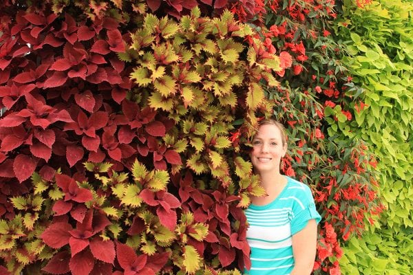 Frequently asked questions about how living walls function.