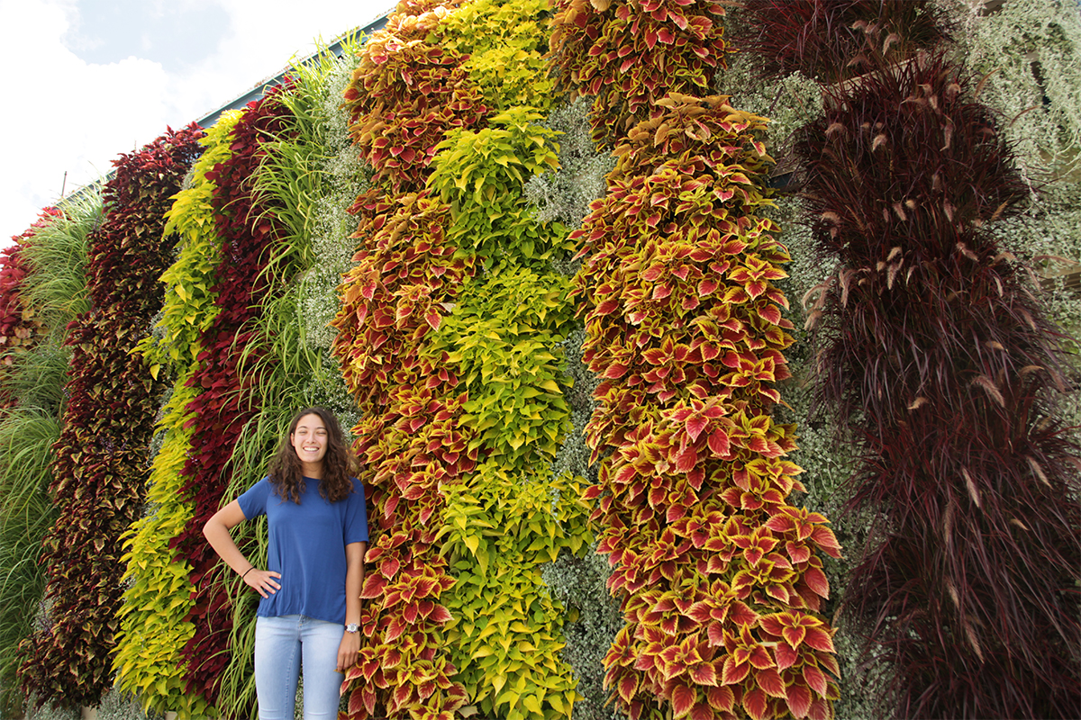 Outdoor vertical gardens by LiveWall offer unlimited design opportunities.