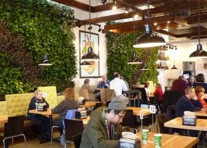 Brome Modern Eatery, originally Brome Burger & Shakes, serves local, sustainable, delicious foods in a seating area softened with tropical v