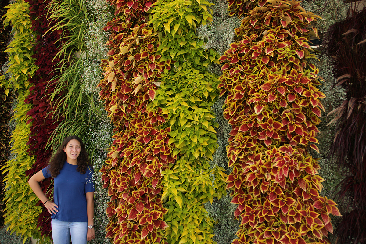 Vertical living wall of annuals in stripe pattern with girl in blue shirt.