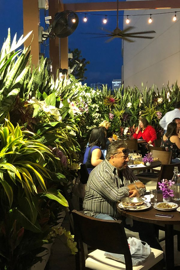 Living walls add privacy and ambiance at Serafina Restaurant in Miami, Florida.