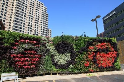 The LiveWall outside of The BOB in Grand Rapids, MI, featuring lush, green, red and purple plants.