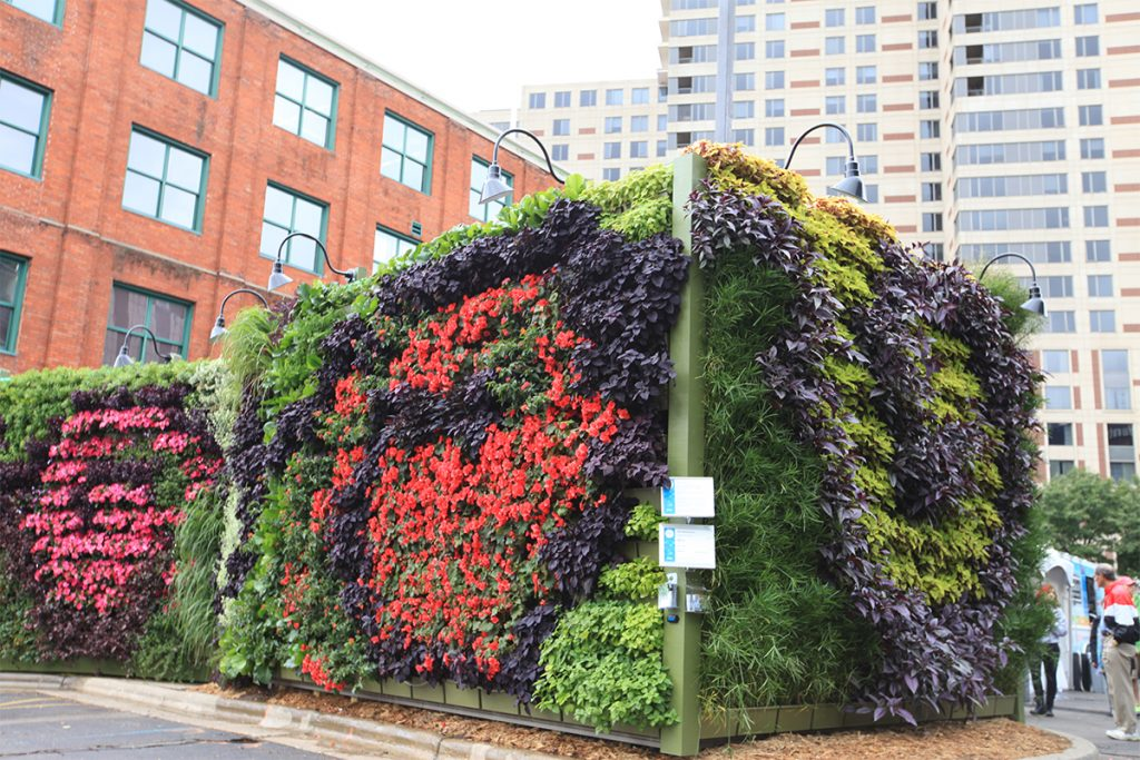 ArtPrize 2013 Back to Eden Living Wall Art