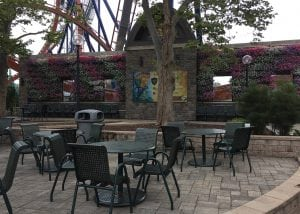 Cedar Point in Sandusky Ohio has a living wall facing the seating area adjacent to the Valravn Roller Coaster.