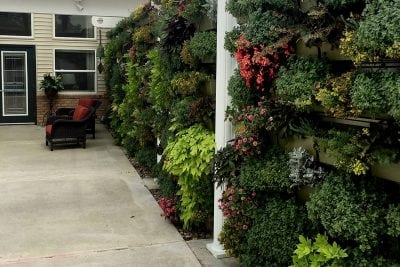 Country Club Rehabilitation Campus at Delaware Living Walls