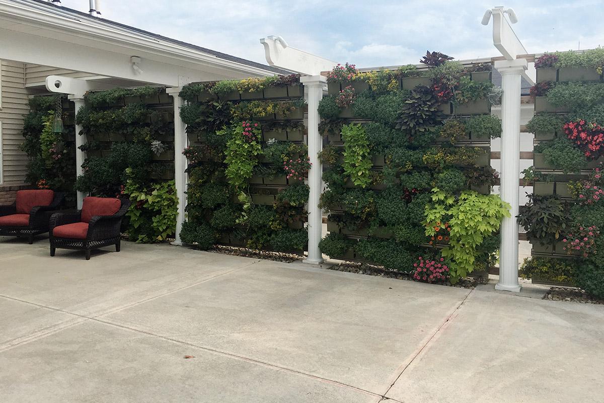 Senior rehabilitation enhanced with therapeutic vertical garden displays.