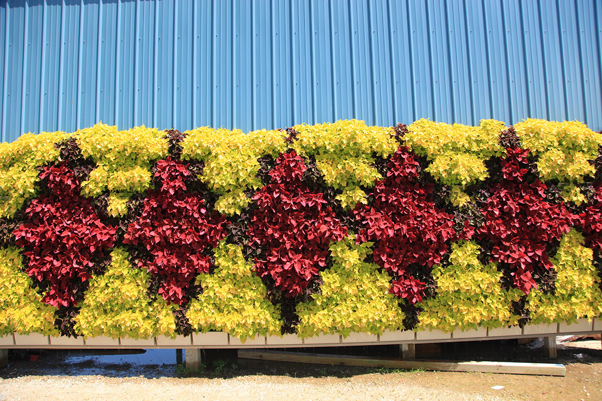 Benefits - LiveWall Green Wall System