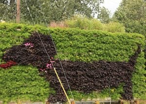 A dog-shaped living wall design.