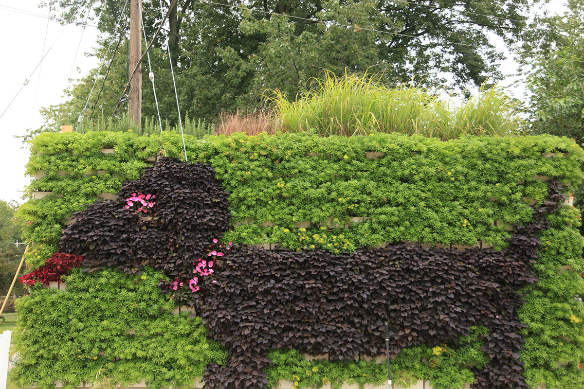 A combination of annuals and perennials create a fun dog pattern.