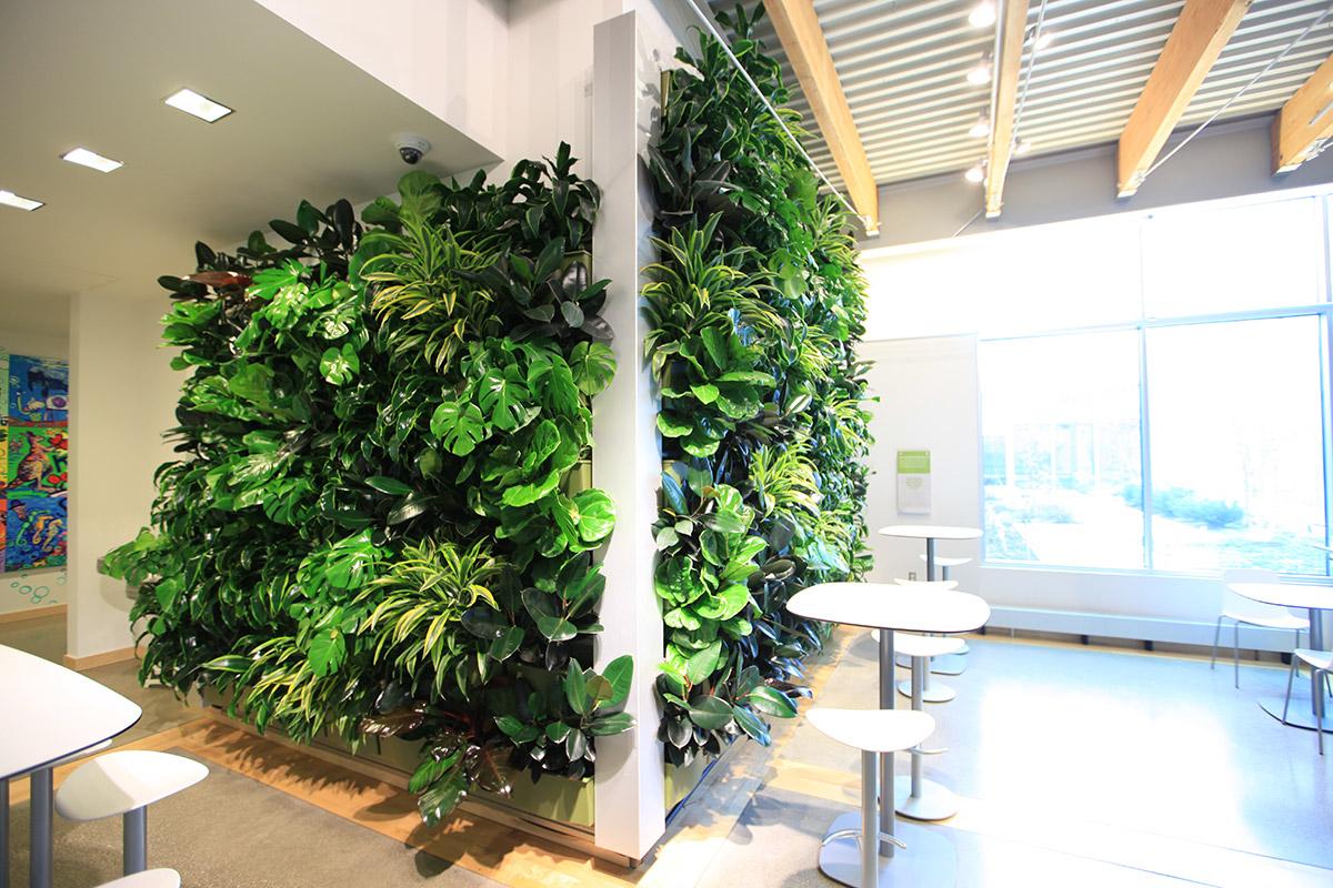 Indoor Living Wall Systems Desainrumahkeren Com
