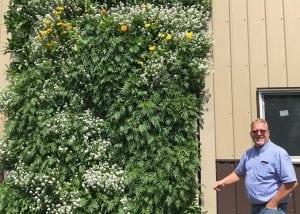 Eric Heuver with his outdoor green wall.
