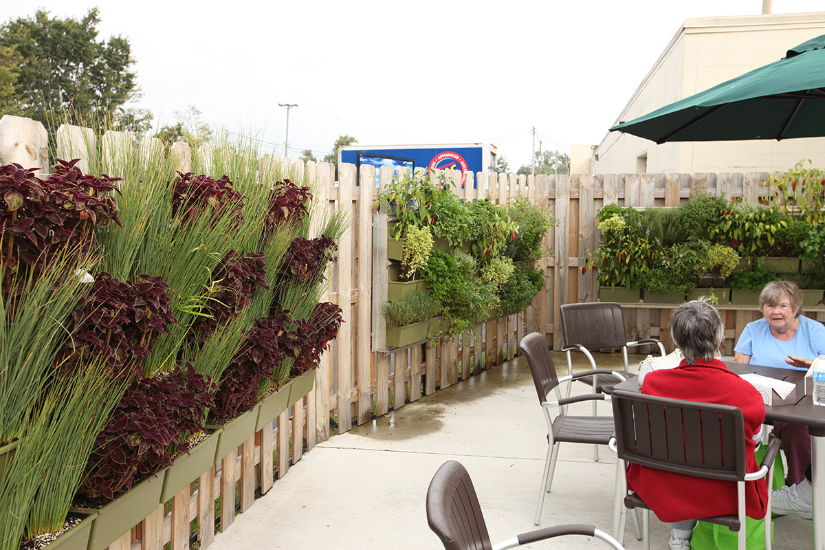 Four Pointes Center for Successful Aging includes multiple outdoor vertical gardens as part of senior gardening activities.
