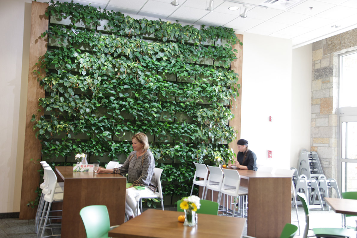 Living Walls That Work Livewall Green Wall System